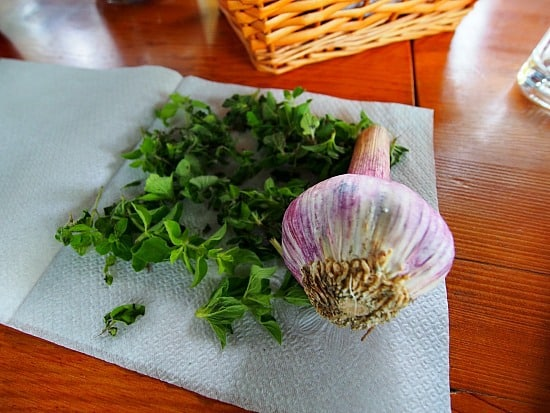 Freshly picked oregano from the side of the road and garlic from the garden. Psst, don't tell anyone, I brought both home with me!