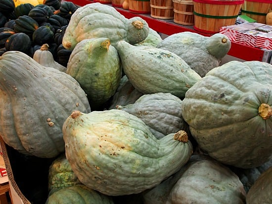I'm not sure what ugly squash's are. I'm not sure that I would know what to do with them!!