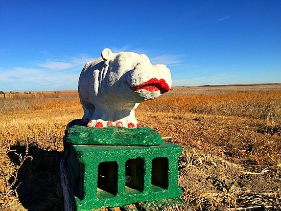 Henrietta the hippo. Farm art at it's finest!