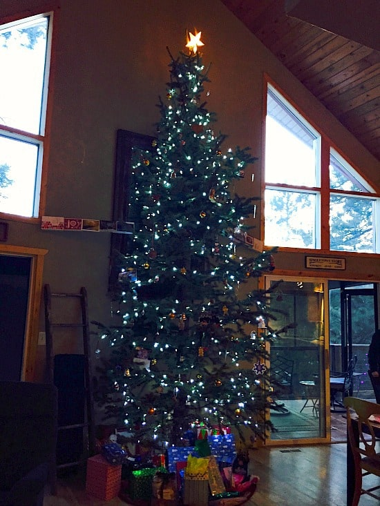 My friends Dave and Tali had a 15 foot Christmas tree. I wish that I had a cabin tall enough to do that too! Except I'm not sure how that I could get on a ladder that tall. Wait, I don't own a ladder that tall!