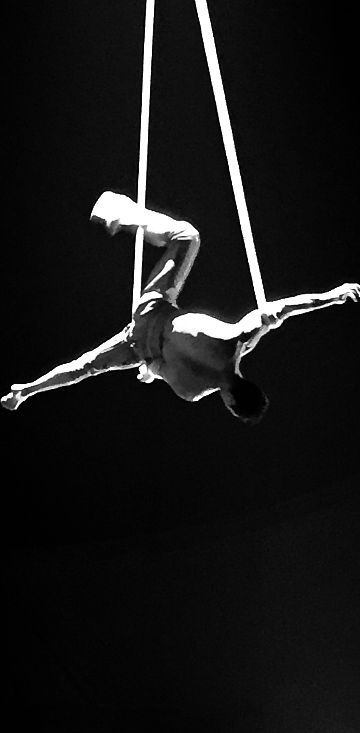 Good looking men climbing on ropes is just cool!