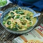 Thai Chicken Udon Noodle Soup