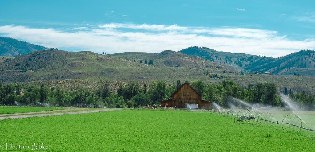 A picture of a perfect barn in south western Montana