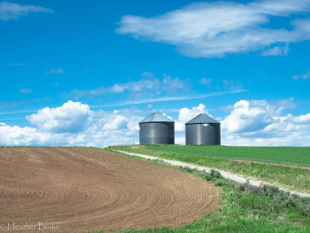 A picture of silos near Ashton, Idaho