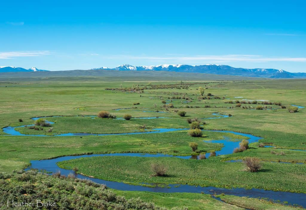 A picture of the Illinois River meandering through the Arapaho National Wildlife Refuge in Walden, Colorado