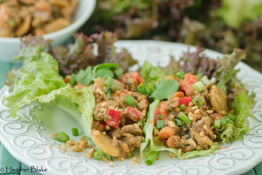 A picture of Thai Chicken Lettuce Wraps