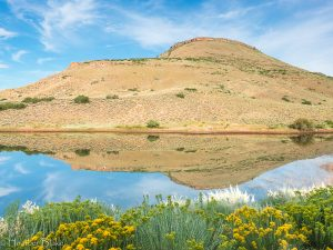 This is a picture of a pond with a reflection taken near Blue Mesa Reservoir, Colorado