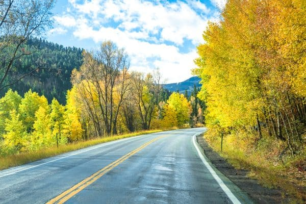 A picture of colorful aspen trees seen from the road while driving the Silver Thread Scenic Byway in Colorado.