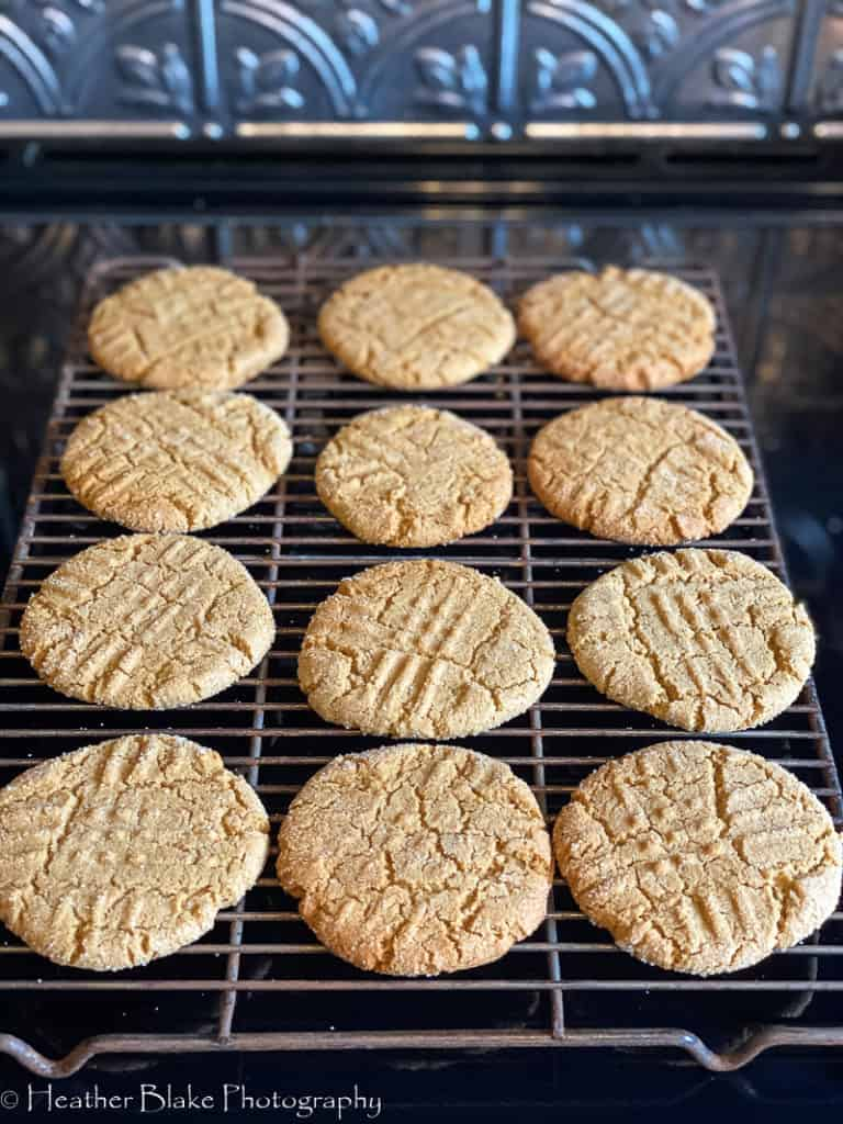 A picture of baked sorghum cookies on a rack.
