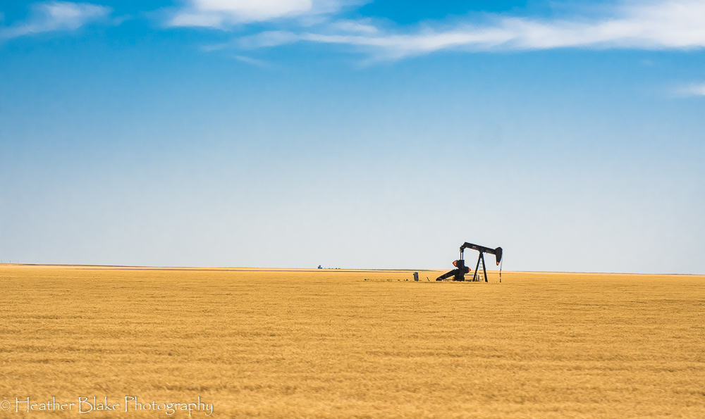 A picture of an oil pump in the middle of a Kansas wheat field.